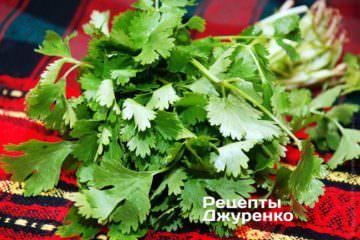 Кінза - зелень коріандру