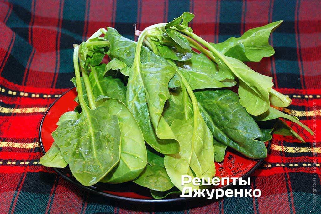 Зеленый свежий шпинат.