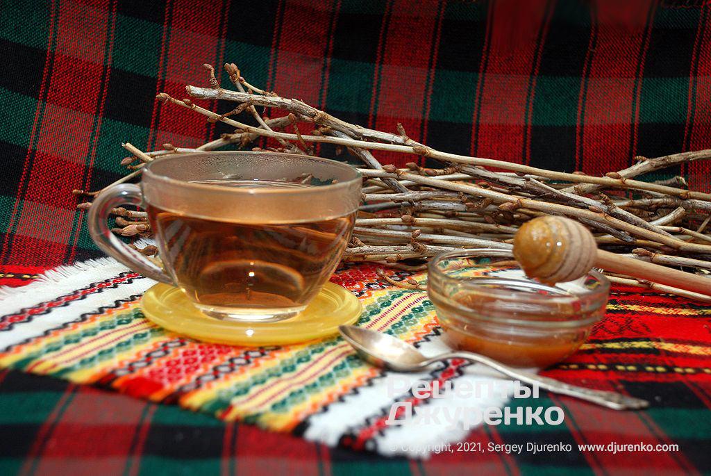 Чай из смородины из молодых побегов с нераспустившимися почками.