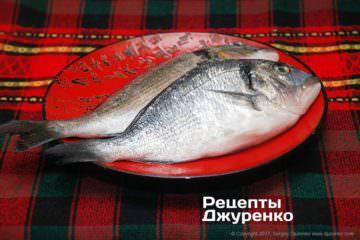 риба дорадо