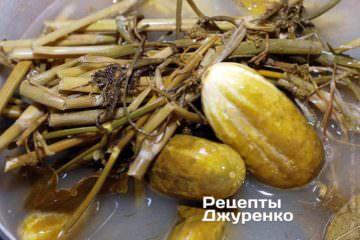 Квашені огірки готові для консервування