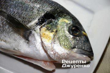 Я до речі вперше розгледів ту саму пляму на голові, якій риба зобов'язана своєю назвою