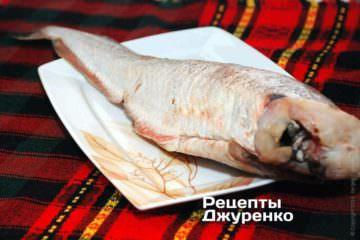 Треска. отличная рыба для жарки