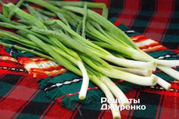 Шаг 1: Перо зеленого лука