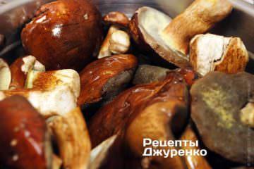 Свіжі лісові гриби
