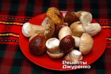 Свіжі білі гриби