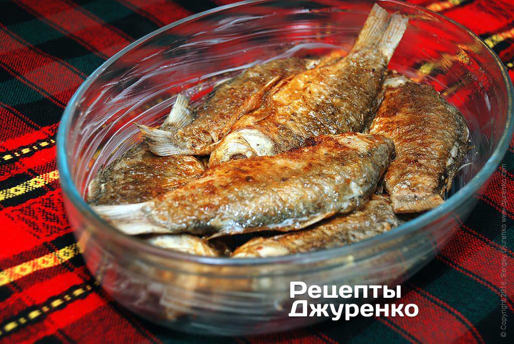 Как приготовить Караси всметане. Шаг 11: Вформу, смазанную сливочным маслом, выложить обжаренных карасей