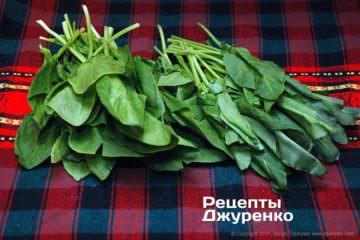 шпинат и щавель