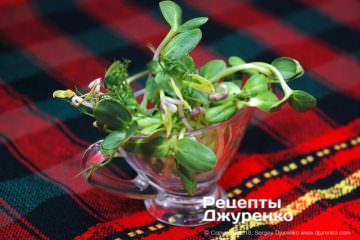Шаг 3: ростки для супа