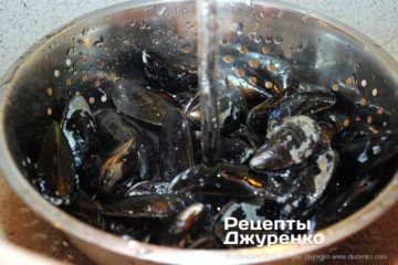 Шаг 2: раковины моллюсков