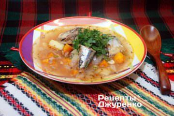 Готова страва суп з сайри
