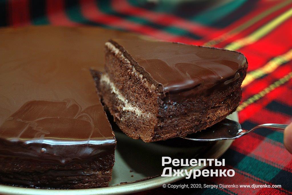 Шоколадный торт из бисквитных коржей.