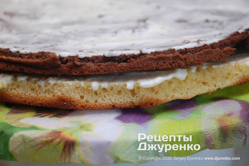Різнокольорові корж торта.
