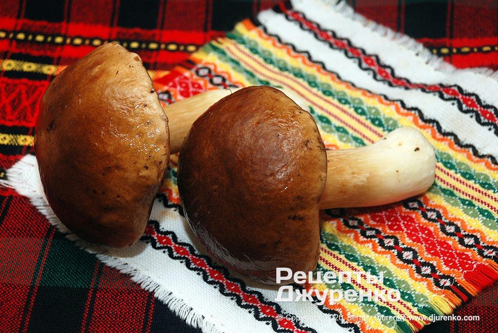 Белые грибы.