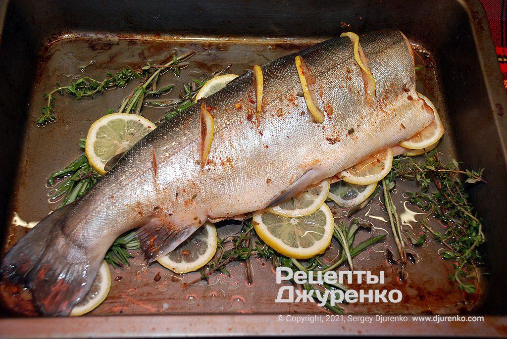 Положить горбушу на травы и лимон, поставить в духовку для запекания.